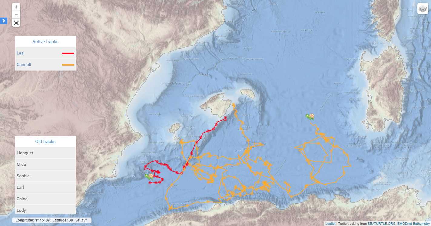 Argos tracking map of two turtles (Source SOCIB)