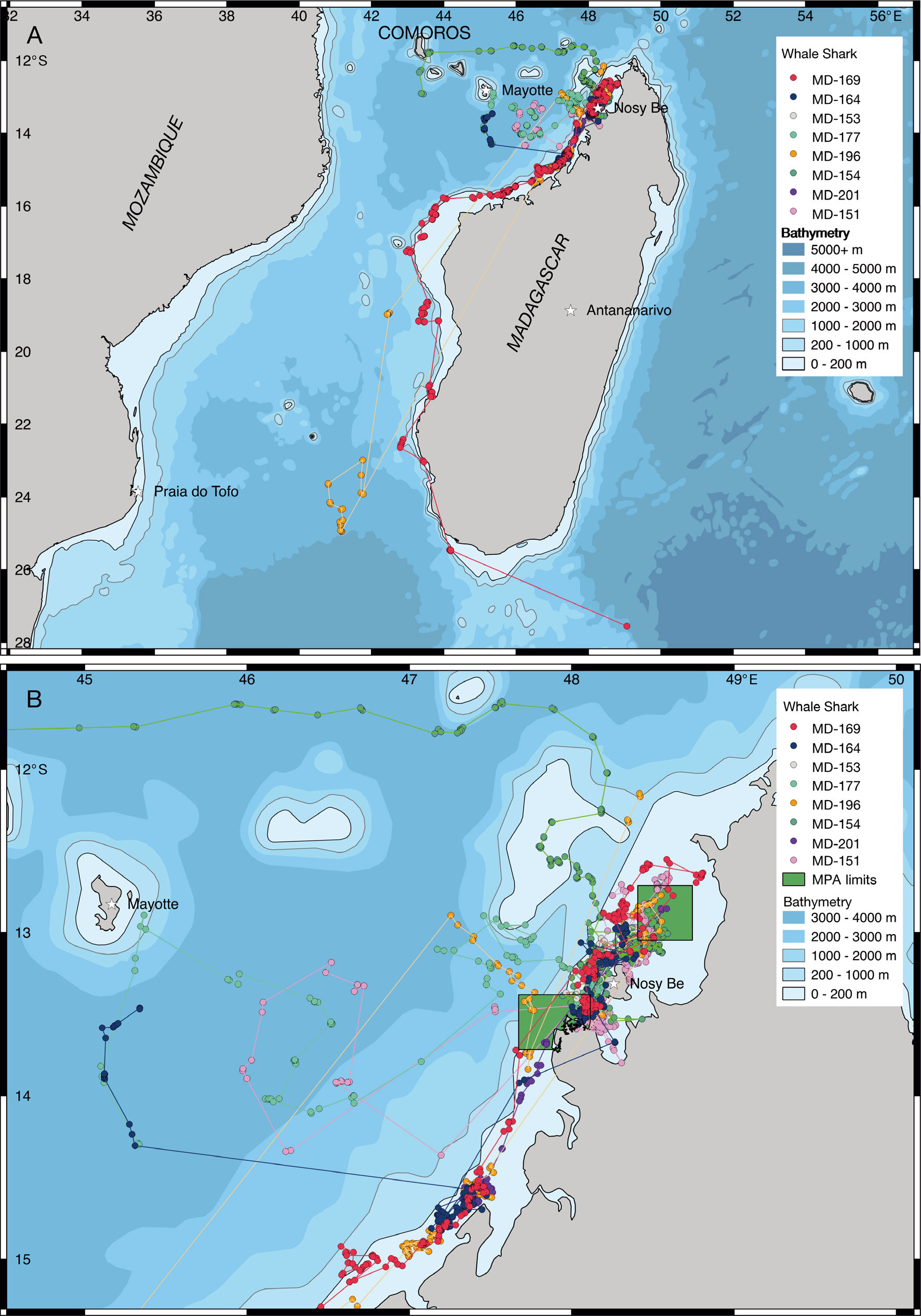 Satellite tracks of whale sharks tagged in Nosy Be. Green squares show the Marine protected areas close to Madagascar. (Credits Madagascar Whale Shark Project/Marine Megafauna Foundation)