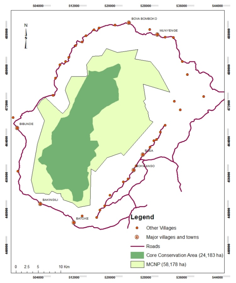 Core Conservation area, Mt. Cameroon National Park (Credits North Carolina Zoo)