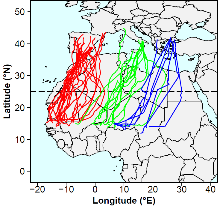 Post-breeding migration tracks of lesser kestrels from the three main European breeding regions (Iberian, Italian and Balkan peninsulas). The tendency to migrate to distinct sectors from the different breeding regions is quite clear on such a representation, and is corroborated by the statistical analysis of migratory connectivity (modified from Sarà et al. 2019)