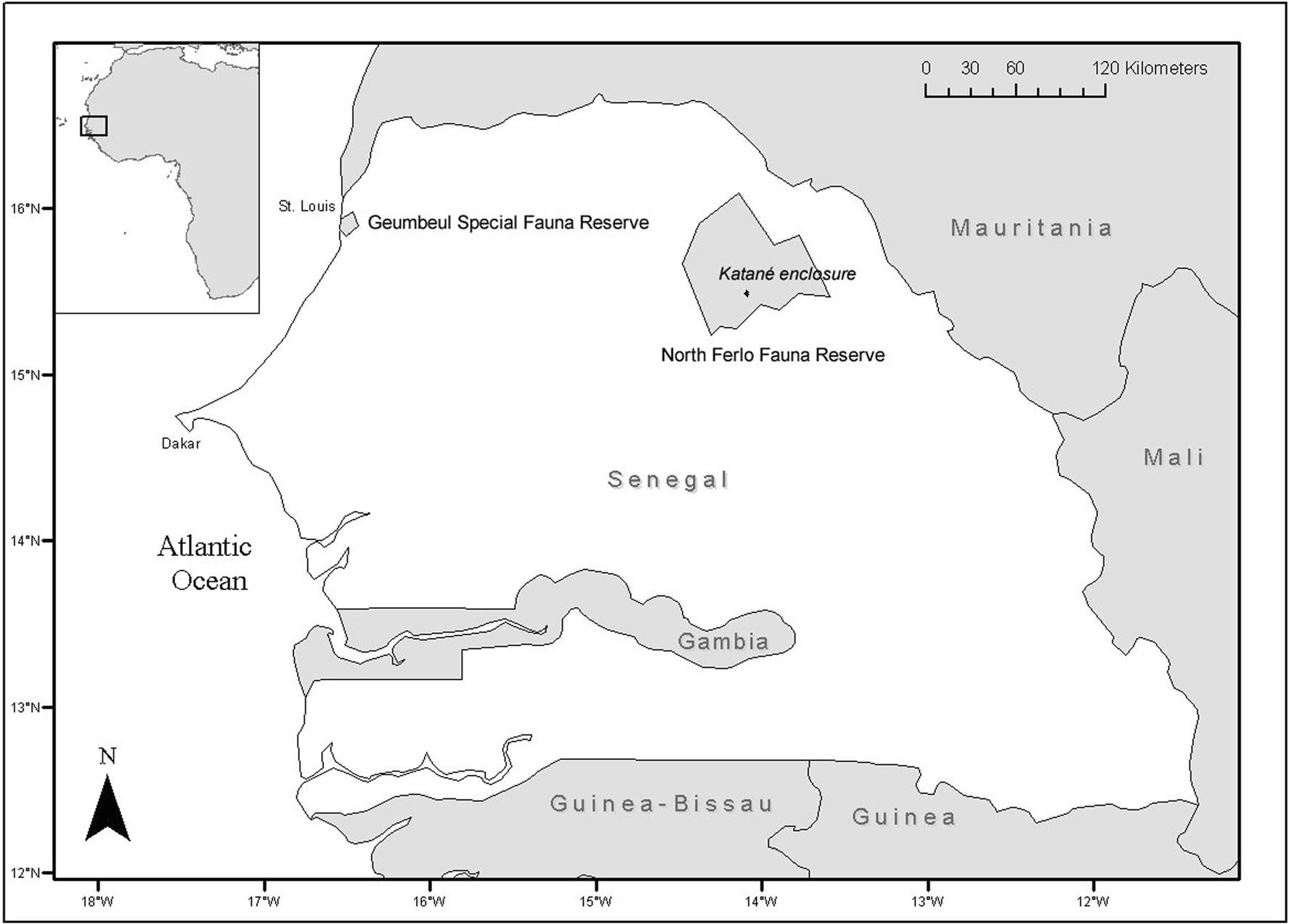 Map of the Katané enclosure (North Ferlo Fauna Reserve, Senegal)e, the area of reintroduction and study (credits Estación Experimental de Zonas Aridas/CSIC)