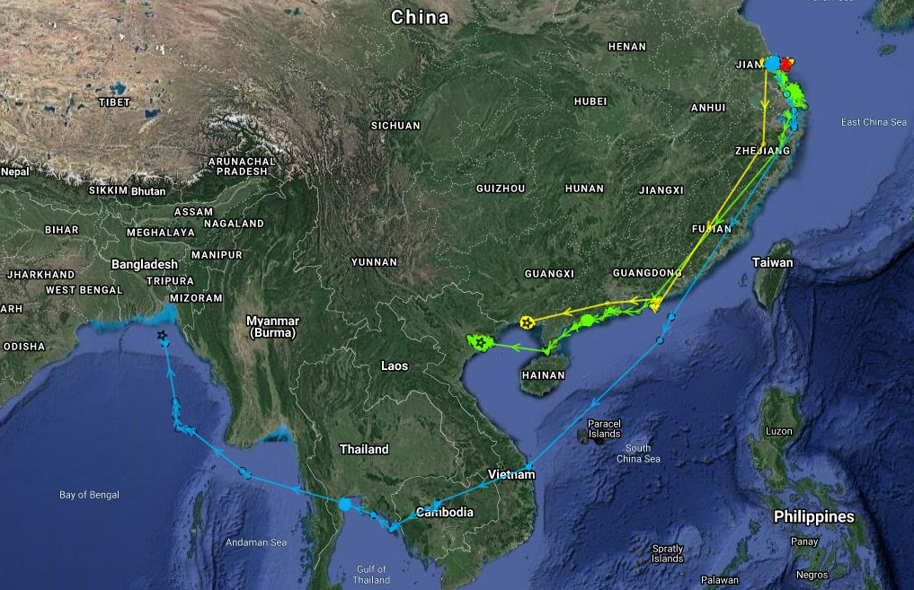 Tracks of three bird fitted with 2-g Argos PTTs in Jiangsu province, China, in autumn 2019 (Credit WWT)