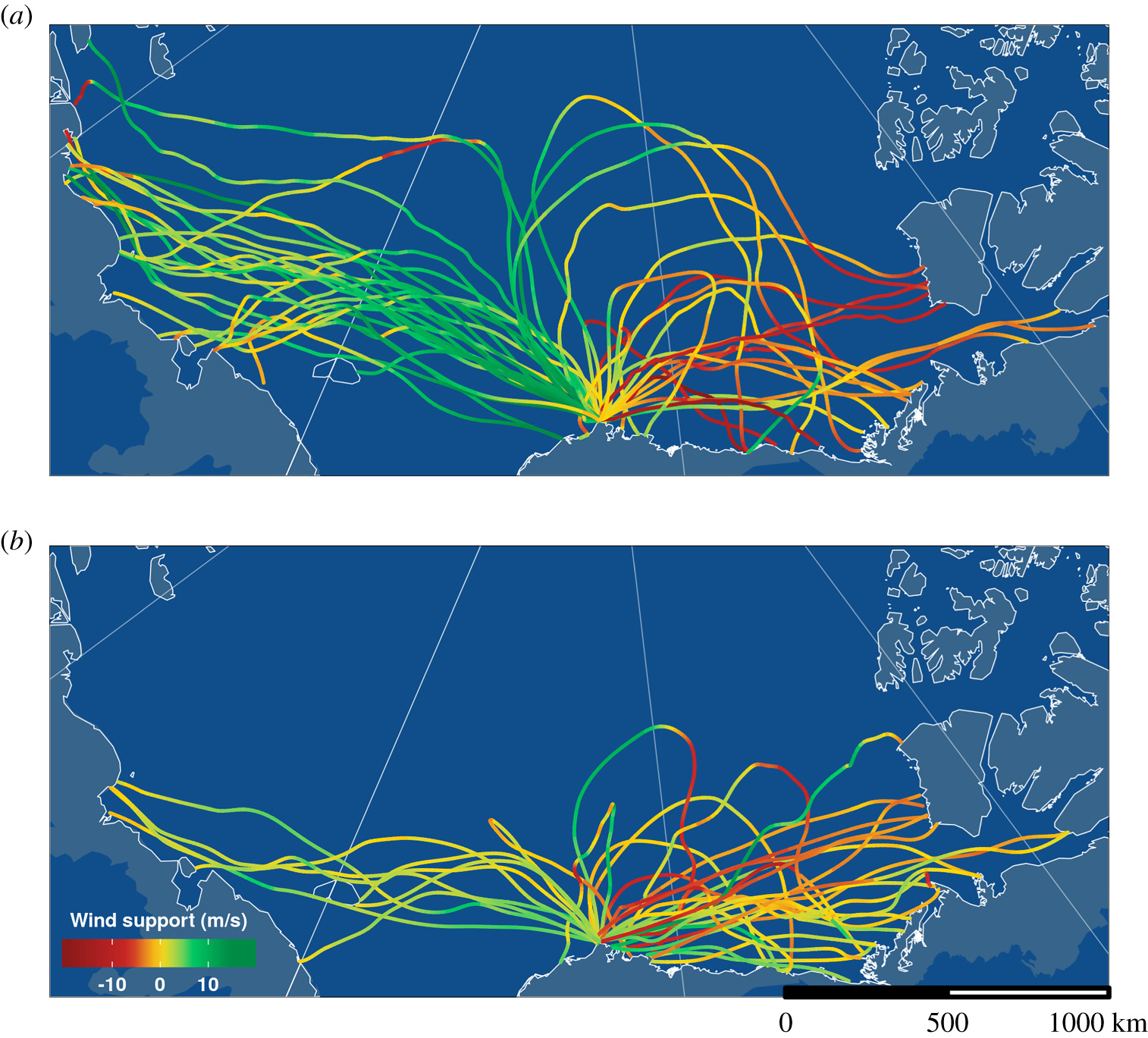 Tracks of male pectoral sandpipers that left Utqiagvik, Alaska (lower centre of the map) during the breeding season in June 2012 (top) and 2014 (bottom). Track colour indicates wind support, i.e. the length of the wind vector in the direction of the bird's movement (ground vector), calculated using wind data at 750 m altitude (ECMWF ERA Interim). For a movie of these flights and for individual tracks see https://www.youtube.com/watch?v=A-Q5J1wRBUA&feature=youtu.be. (credit: Max Planck Institute for Ornithology; from [Krietsch et al, 2020])