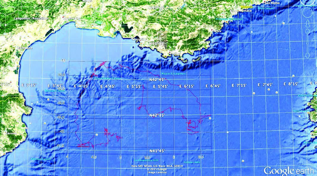 The whale track on the Gulf of Lion map